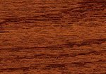 red chestnut 232