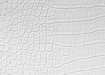 Dackor - Leather White Alligator